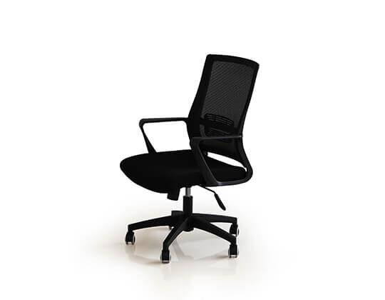 Darwin executive chair